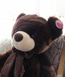 عروسک خرس بزرگ 2 متری قهوه ای